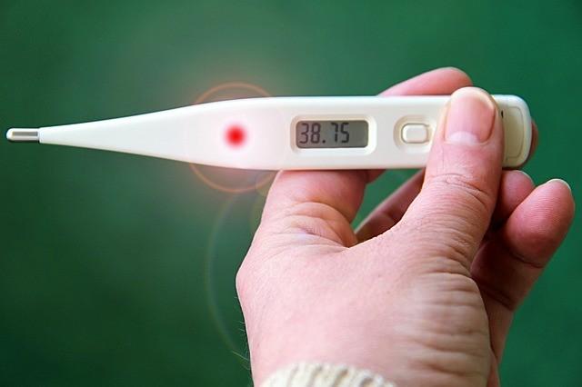 ถวายปรอทวัดไข้ (Thermometer) ไม่ยากไร้ เมื่อไข้ป่วย